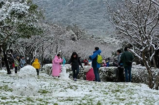 入冬後幾波寒流報到,北部民眾開心追雪。(報系資料照)