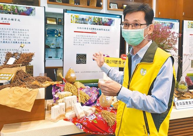 台南農改場嘉義分場場長陳榮坤表示,台南19號不僅有台南13號的芋香,還有台南16號米質優良口感的優點。(劉秀芬攝)