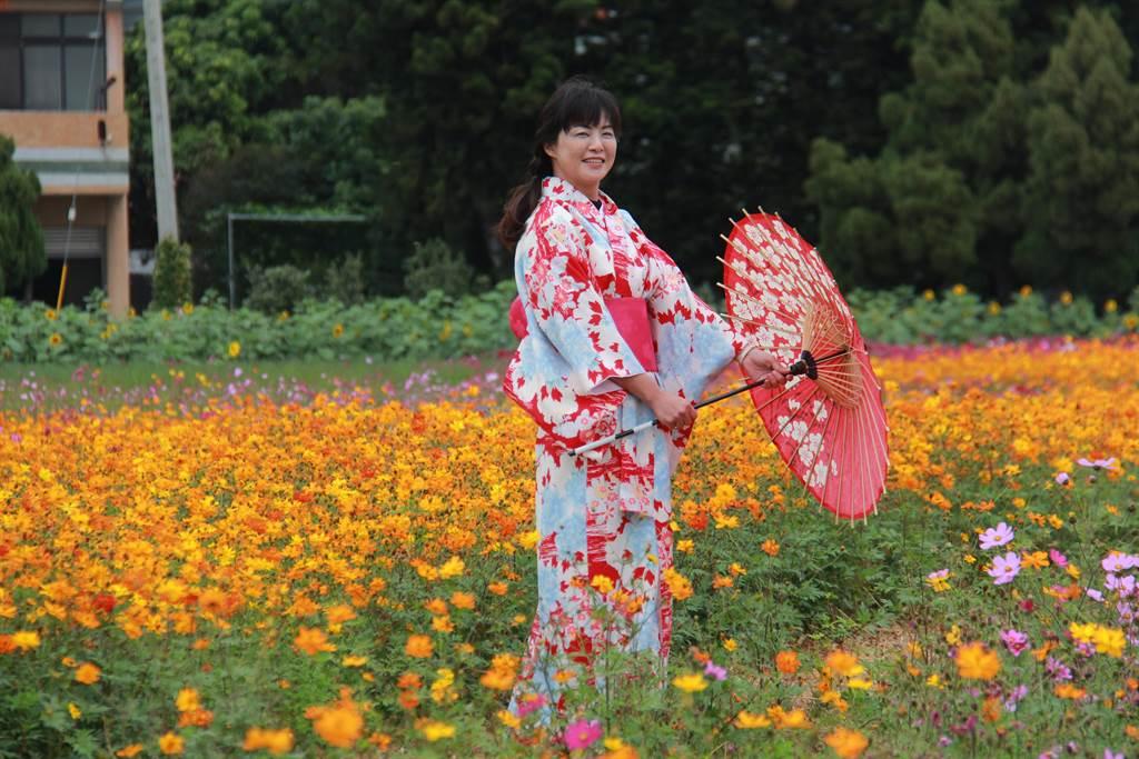埔鹽鄉長許文萍,還換上和服漫步在花海中,讓人以為置身在日本。(吳建輝攝)