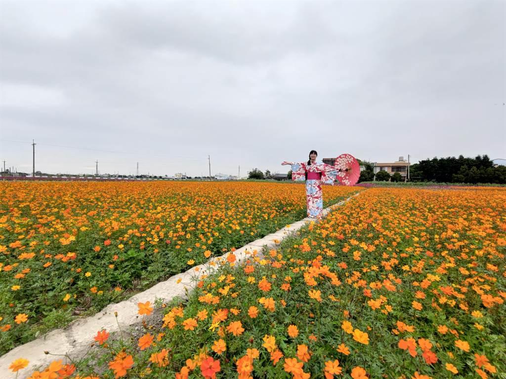 埔鹽鄉長許文萍說,歡迎全國鄉親一同到埔鹽來賞花,迎新春享美食。(吳建輝攝)