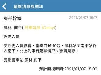 寒風吹倒竹子擋鐵軌 花蓮鳳林-南平列車延誤