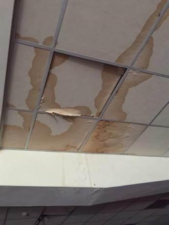 文化國小漏水嚴重 二期防滲工程朝校園種電方向前進
