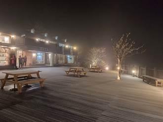 影》寒流來襲水氣足 宜蘭太平山下雪了 翠峰山屋鋪銀白地毯