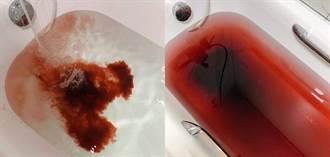 洗澡驚見浴缸血水滿出來 命案兇手曝光:是地瓜球