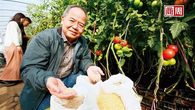 林台總經理賴宏南,憑著成千上萬的小種子成了國際市場的隱形冠軍。(圖/駱裕隆攝)