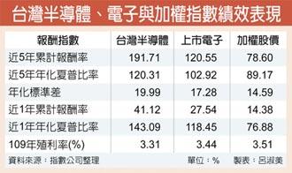 台灣半導體指數 產業一把罩