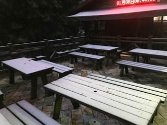 超浪漫!桃園拉拉山降下瑞雪成銀白世界