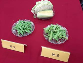 消基會抽檢甜豆莢18樣本 全數農藥超標