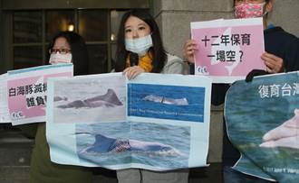 台灣媽祖魚保育聯盟「十二年保育一場空白海豚滅絕倒數誰負責」監察院陳情