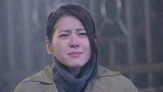 蘇晏霈《多情》8度低溫淋雨 喪夫太入戲回家頻掉淚