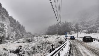 山區初雪報到 銀色世界迎賓