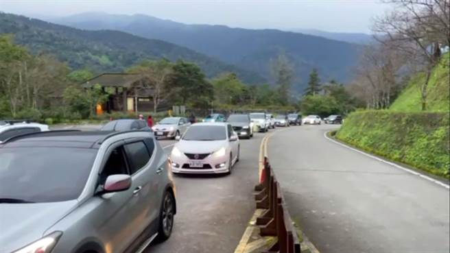 太平山國家森林遊樂區在今天開園時,車陣一度回堵4公里長。(羅東林管處提供/李忠一宜蘭傳真)
