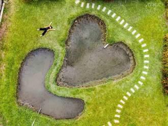 網美必去!雙心池塘打卡 3百多歲老樹求好運