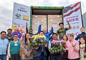 屏東蘭花種植占全台一半 今年首個貨櫃出口美國