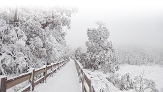 寒流今發威 台南以北下探6度