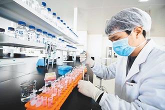 京產新冠疫苗 生產全速開進