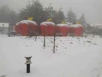 福壽山再降皚皚白雪 蘋果屋如覆糖霜