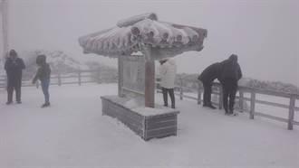 合歡山積雪破紀錄 雪落武嶺成銀白世界 幻霧朦朧美翻