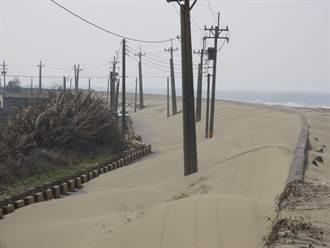 台南北門海堤也有沙丘美景 阻漁民路相關單位將清除