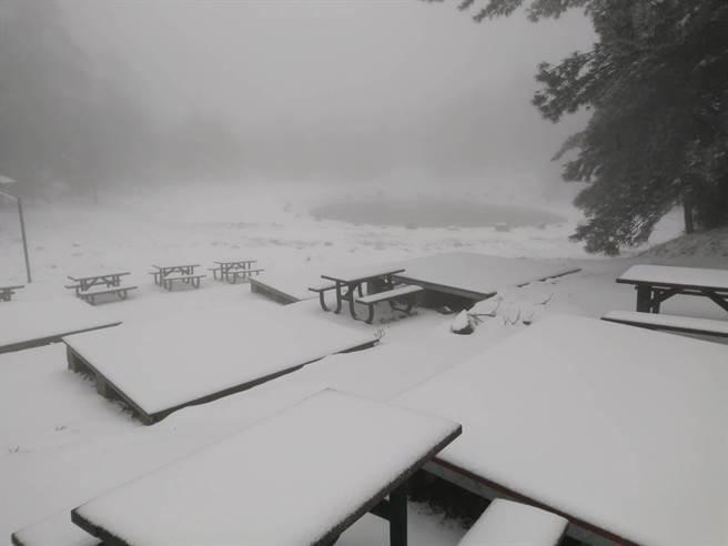 福壽山農場今天凌晨再度降雪,海拔2574公尺的露營區積雪達5公分。(福壽山農場提供/王文吉台中傳真)