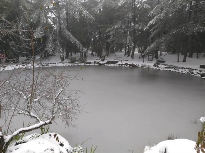 福壽山農場今天凌晨再度降雪,天池結冰。(福壽山農場提供/王文吉台中傳真)