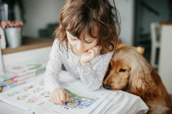大陸一隻神犬不只會提醒小主人寫作業,竟還會叼出衣架進行「家法伺候」。(示意圖/達志影像)