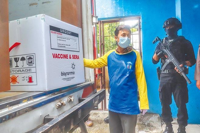 自1月4日起,印尼衛生部開始向全國34個省級行政區分發由中國科興公司研製的新冠疫苗。圖為印尼東爪哇省泗水市的疫苗搬運現場。(新華社)