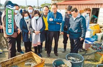 新聞早班車》宜蘭龍虎斑凍死 養殖戶損失近百萬