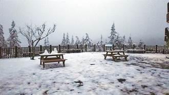 太平山不只有雪景 比基尼辣妹穿小丁 撩人姿勢網嗨爆