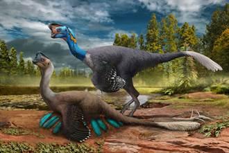 7000萬年前罕見竊蛋龍化石出土 完美定格母愛瞬間