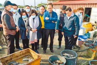 宜蘭龍虎斑凍死 養殖戶損失近百萬