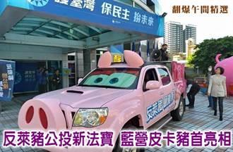 反萊豬公投新法寶 藍營皮卡豬首亮相
