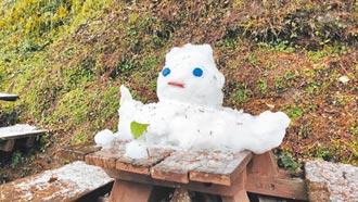 向陽遊樂區雪人 活了6天