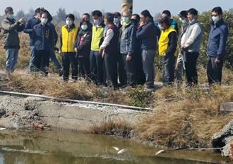 台南虱目魚寒害災損救助金 農曆年前撥入漁民口袋