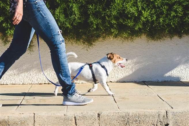 單純散步想健康長壽恐不夠,運動要做到感覺有些喘的中等強度。(示意圖/Shutterstock)