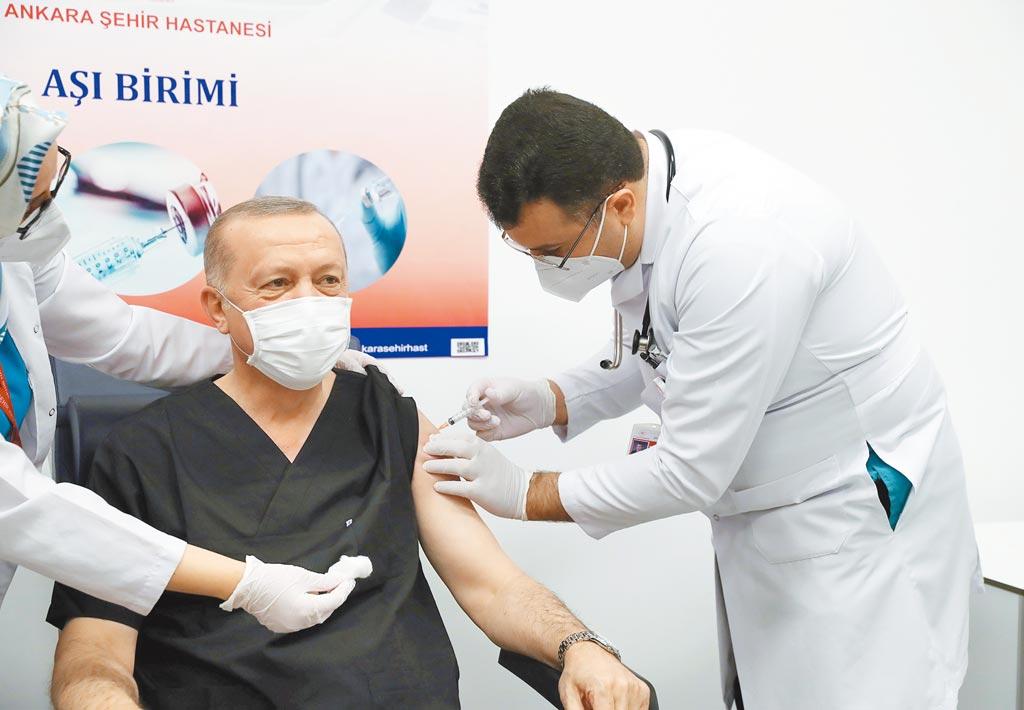 土耳其總統埃爾多安1月14日接種大陸製新冠疫苗。(新華社)