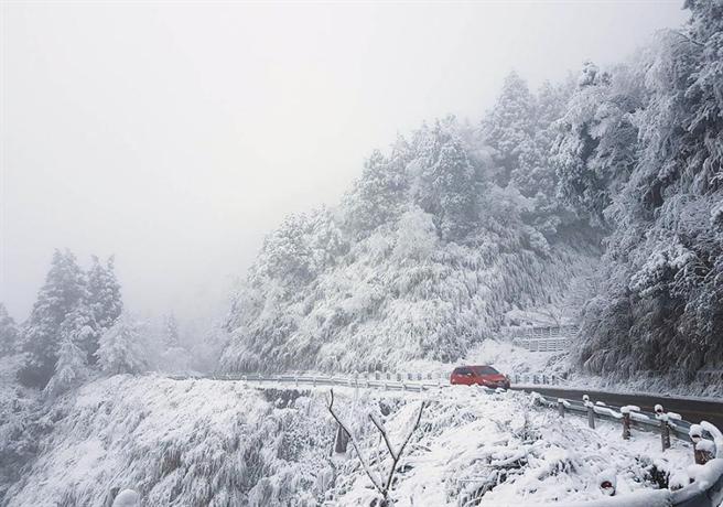 冷氣團來襲,太平山明下半天有機會再降雪。(羅東林管處提供)