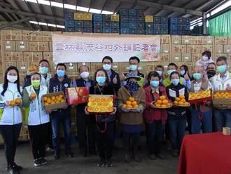 陳吉仲雲林促銷茂谷柑 拓展國內外市場