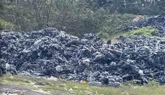草莓王國年產250噸廢棄棚布無處去 大湖鄉長籲徵收環保基金獎勵回收業者