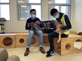 竹市動保園區周年 林智堅親任「認養大使」邀民眾給毛孩溫暖的家