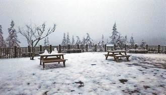 寒流沒了嗎 颱風論壇曝冷空氣暫離 台灣相對不寒冷
