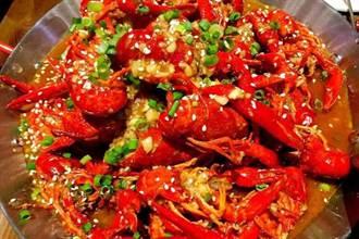 台灣人看大陸》深圳昆蟲餐與小龍蝦初體驗