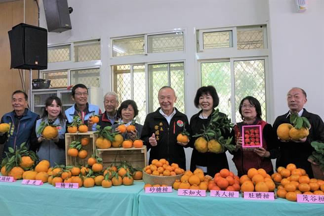苗栗縣獅潭鄉推銷農產草莓、柑橘,將在1月23、24日於新店村義民廟前廣場舉辦「橘莓戀」農產品促銷活動。(巫靜婷攝)