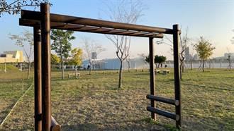婦人到中央公園吊單桿摔傷申請國賠 市府:全力協助