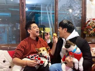 朱孝天暖心為浪浪發聲 《P-Pet》首集大啖狗食