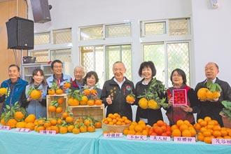 獅潭農產促銷續辦 橘莓戀周末登場