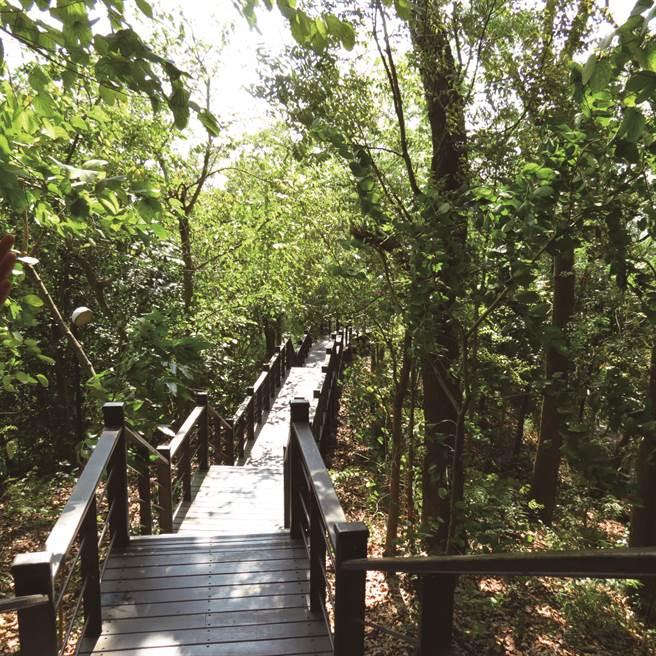 台南龙崎文衡殿 龙崎漫游-虎形山公园吊桥。(图/圆神出版提供)