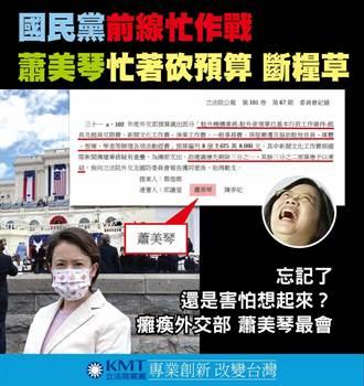 凍結駐美代表交際費挨批 藍黨團回擊:蕭美琴在野卡預算、執政搶預算