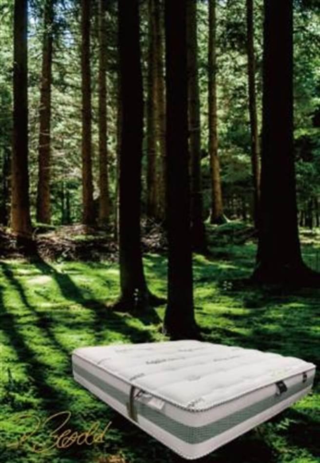 微風南山「Fitalia飛塔莉亞名床X5系列」,5 x 6.2尺,價值29萬8000元,是各館獎值最高。(微風提供)