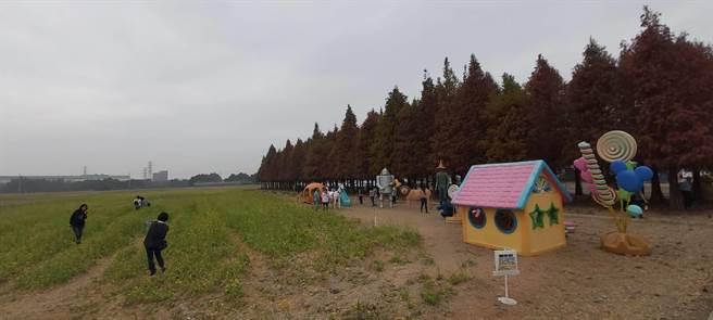 六甲區公所陸續在落羽松林周遭設置可愛裝置,吸引遊客拍照。(六甲區公所提供/劉秀芬台南傳真)